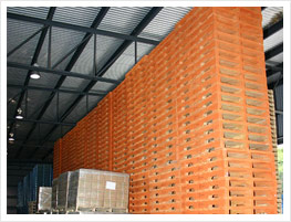 Wooden pallet for exports